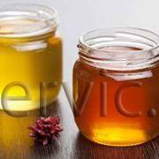 تولید و پخش عسل